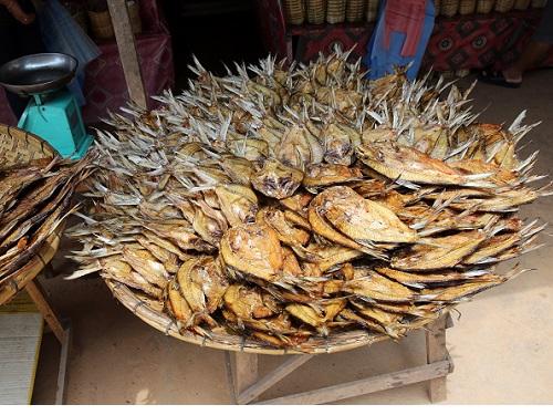ラオスの干し魚.JPG