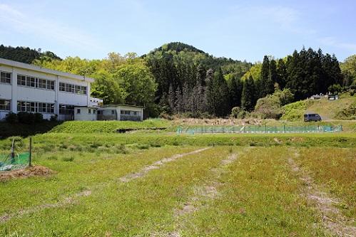 佐賀小学校と高龍寺山.JPG