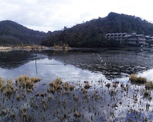 深泥池と西山.jpg