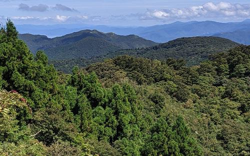 20210911岩籠山とそれへの稜線.jpg