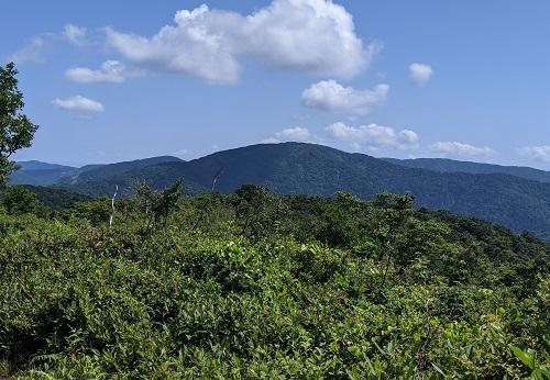 20210721武奈ヶ岳からの三重岳.jpg