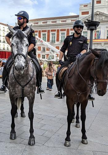 20190609マドリーとの警察と馬.jpg