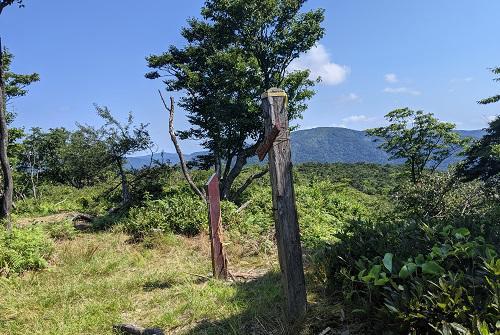 20210722武奈ヶ岳山頂.jpg