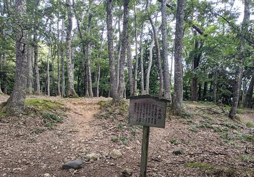 20201007小谷城本丸跡の林.jpg