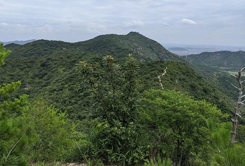 20210709鷹ノ巣山からの高御位山.jpg