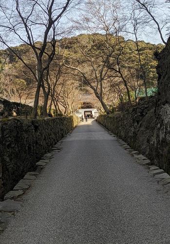 20200321興聖寺からの仏徳山方面.jpg